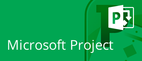 Microsoft Project Fundamentals 6 coaching hours