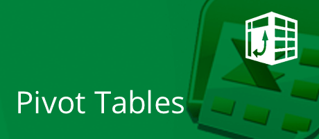 Microsoft Excel - Pivot Tables 6 coaching hours