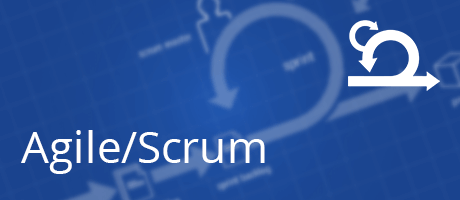 Scrum for Team Members + 12 coaching hours