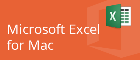 Microsoft Excel for Mac - Basic & Advanced 6 coaching hours